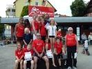 06.07.2013 Kreismeisterschaften im 4-Kampf - Zirndorf_9