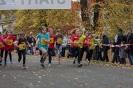 10.10.2015 Stadtmeisterschaften im Laufen - Zirndorf_9