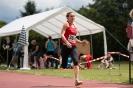 11.06.2016 Mittelfränkische Meisterschaften - Herzogenaurach_6