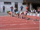 14.06.2008 Mittelfränkische Meisterschaften - Herzogenaurach_16