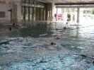 26.06.2008 Schwimmabnahme für das Sportabzeichen - Zirndorf_1