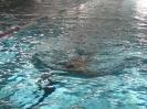 26.06.2008 Schwimmabnahme für das Sportabzeichen - Zirndorf_4
