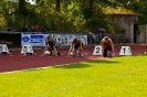 22.09.2012 Schülerolympiade - Oberasbach_41