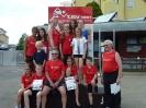 06.07.2013 Kreismeisterschaften im 4-Kampf - Zirndorf_11