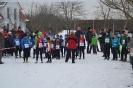 27.01.2013 Bezirksmeisterschaften im Crosslauf - Zirndorf_2