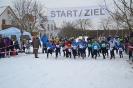 27.01.2013 Bezirksmeisterschaften im Crosslauf - Zirndorf_5
