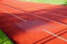 28.08.2014 Renovierung des Sportplatzes - Zirndorf_16