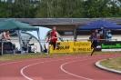 13.06.2015 Mittelfränkische Meisterschaften - Burghaslach_6