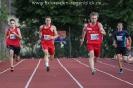 29.07.2015 Höchstadter Leichtathletik-Meeting - Höchstadt_20