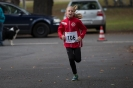 08.10.2016 Stadtmeisterschaften im Laufen - Zirndorf_7