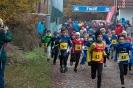 12.11.2016 Waldlauf - Büchenbach