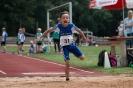 23.07.2016 Kreismeisterschaften Mehrkampf - Zirndorf_48