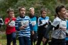 07.10.2017 Stadtmeisterschaften im Laufen - Zirndorf_145