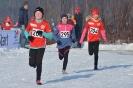 22.01.2017 Mittelfränkische Cross-Meisterschaften - Eckental_13