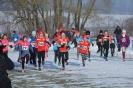 22.01.2017 Mittelfränkische Cross-Meisterschaften - Eckental_7