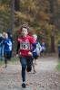 10.11.2018 Waldlauf - Büchenbach