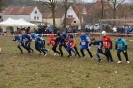 02.02.2019 Mfr. Crosslauf - Burghaslach