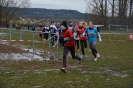 10.02.2019 STUDEX Crosslauf - Eckental